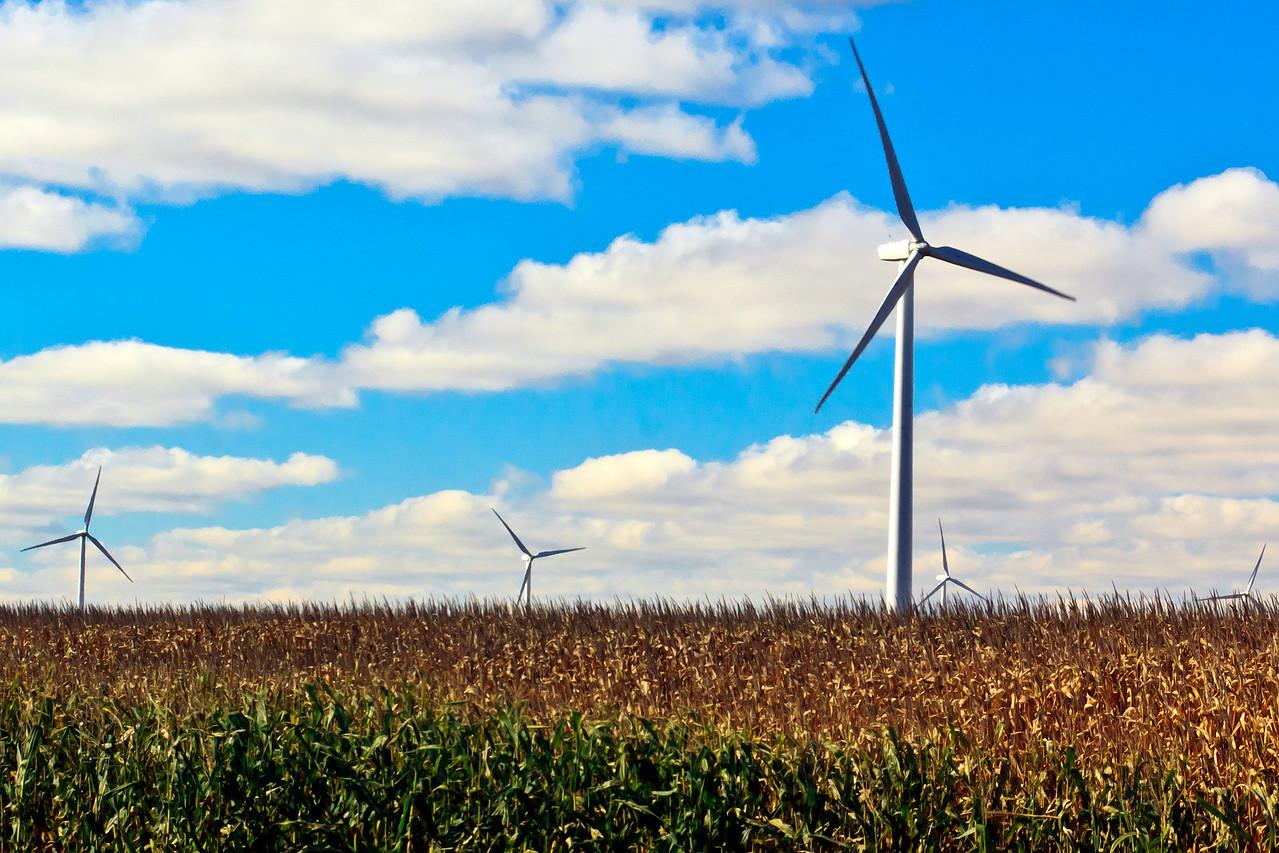 20111001 Wind Farm  32522