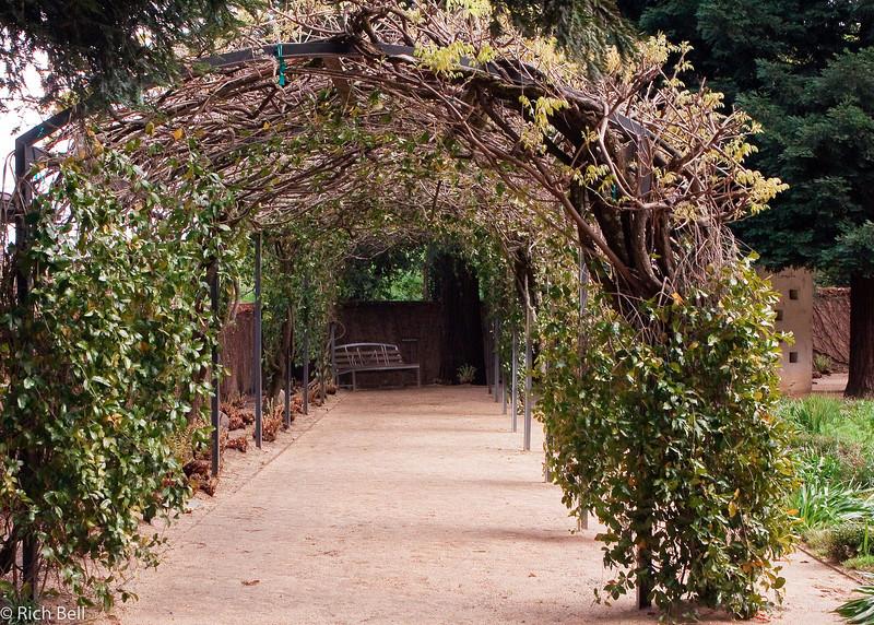 20100330_california_0061