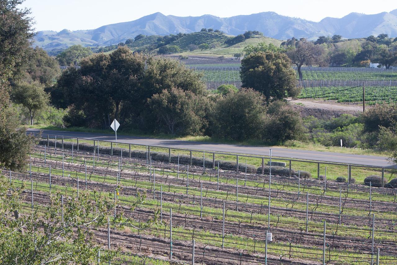20100326_california_0227