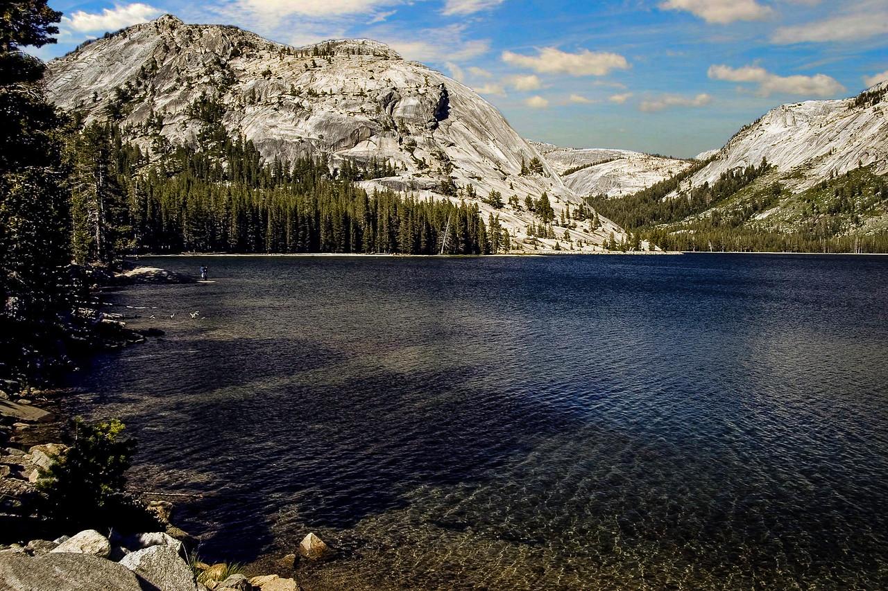 Yosemite National Park; California 0029
