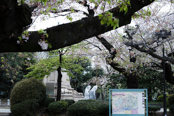 Tokyo corona diary