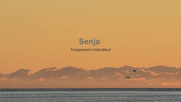 """Tungeneset mellom Steinfjord og Ersfjord på yttersia av Senja er et fantastisk sted å se midnattsolen fra. Solen går bak de storslåtte """"Okstinnan"""", men det er etter midnatt. Opptaket ble gjort natt til 18. juli 2011. Med på tur var Dagfinn, Hilde, Siw og Stein Egil. Lav og dårlig lyd, men skru opp lyden for å få med deg stemningen. Kamera: Nikon D7000."""