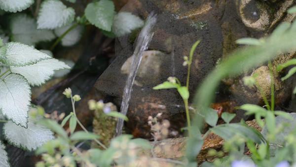 En sommerdag i hagedammen juni 2012. Dammen er på 8000 liter og er 120 cm på det dypeste. Løvehode i stein spruter vann i en kulp og nyinnkjøpt pagode bidrar til østlig preg. Vi har ca 25 gullfisk.