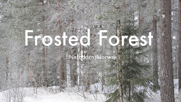 Frosted Forest - enchanting winter-scenery  I will take you with me on a short tour in the forest close to my home at Nesodden in Norway. (Nesodden is a peninsula defining the bottom of Oslo-fjord)  Fog and freezing temperatures often makes beautiful scenery in December, January and February.  This is my very first attempt at filming anything. I recently bought a digital SLR camera with full HD-movie features; the Nikon D7000. I filmed in 1080p, 24 fps. For this movie I used two lenses. Sigma DC 17-70mm 2,8-4 Macro HSM for the handheld and monopod shots. For the tripod shots I used Sigma 70-300mm 4-5,6. Unfortunately my old, spindly camera-tripod did not have a head for panning.