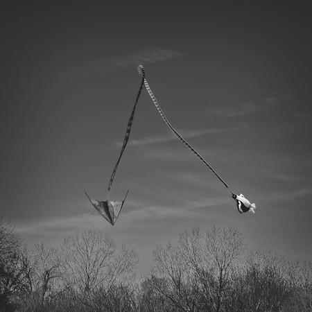 Kite Fest 2020-03-0074