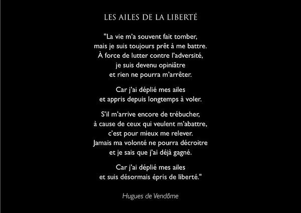 """Poème """"Les ailes de la liberté"""""""