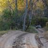 Vindlande vägar i Valnötskogen