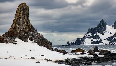 Pinnacle and  Penguins