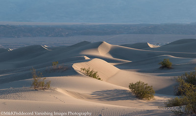 Dunes Image # 01