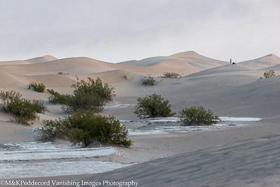 Dunes Image # 04