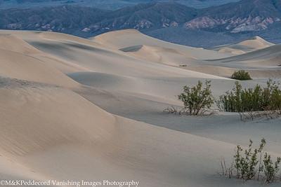 Dunes Image # 10