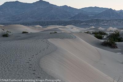 Dunes Image # 12