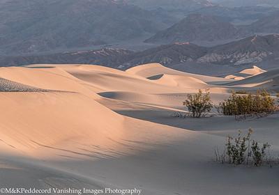 Dunes Image # 14