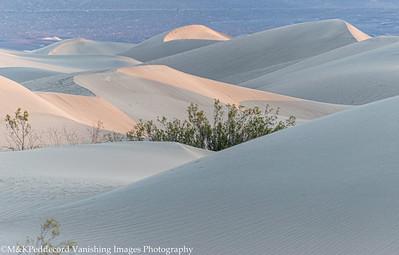 Dunes Image # 13