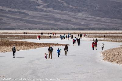 Salt Highway