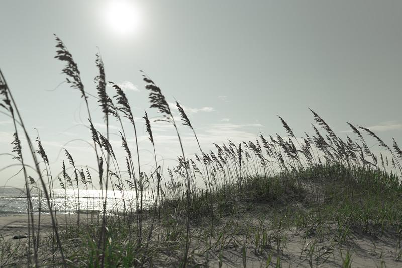 ocean sound breeze... #nc #outerbanksofnc  #sonya7rii