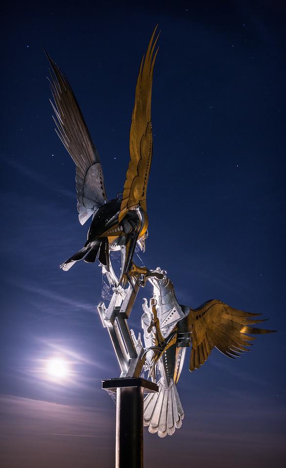 Malvern Buzzards & Full Moon