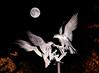 Buzzars under Full Moon