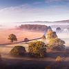 Light Autumn Mist