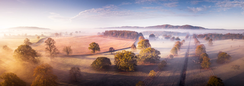 Light Autumn Mist