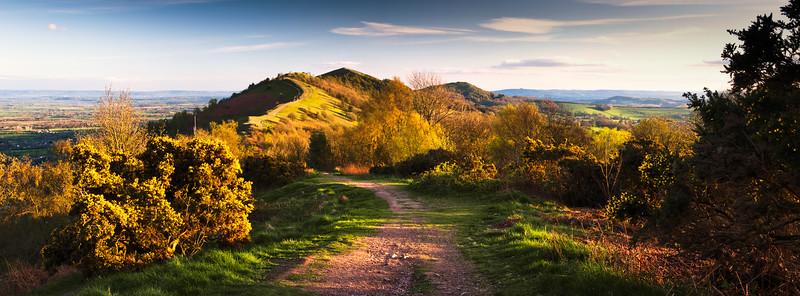 Spring on Malvern Hills
