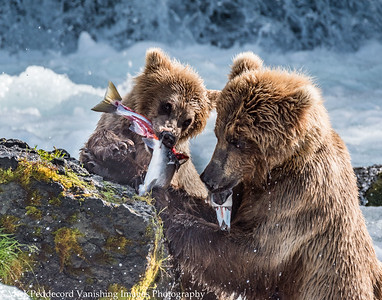 Mom Teach Junior to Fish