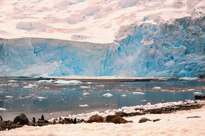 Wave created by caving glacier viewed from  Danco Island