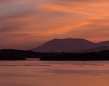 Oyster Traps Sunset Bantry Bay