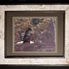 Bald Eagle 11x14 Birchbark Frame