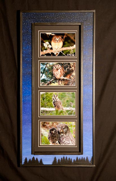 Owls Hand-painted Long Frame