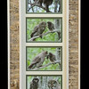 Owl Family Birchbark Long Frame
