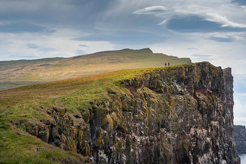 Látrabjarg bird-cliff