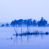 "Blue Fog © 2007 Nova Mackentley Sheldrake Reservoir,, Paradise, MI   BFS  <div class=""ss-paypal-button""><div class=""ss-paypal-add-to-cart-section""><div class=""ss-paypal-product-options""><h4>Mat Sizes</h4><ul><li><a href=""https://www.paypal.com/cgi-bin/webscr?cmd=_cart&amp;business=T77V5VKCW4K2U&amp;lc=US&amp;item_name=Blue%20Fog%20%C2%A9%202007%20Nova%20Mackentley%20Sheldrake%20Reservoir%2C%2C%20Paradise%2C%20MI%20%20%20BFS&amp;item_number=http%3A%2F%2Fwww.nightflightimages.com%2FGalleries-1%2FImpressions%2Fi-8gS6v8H&amp;button_subtype=products&amp;no_note=0&amp;cn=Add%20special%20instructions%20to%20the%20seller%3A&amp;no_shipping=2&amp;currency_code=USD&amp;weight_unit=lbs&amp;add=1&amp;bn=PP-ShopCartBF%3Abtn_cart_SM.gif%3ANonHosted&amp;on0=Mat%20Sizes&amp;option_select0=5%20x%207&amp;option_amount0=10.00&amp;option_select1=8%20x%2010&amp;option_amount1=18.00&amp;option_select2=11%20x%2014&amp;option_amount2=28.00&amp;option_select3=card&amp;option_amount3=4.00&amp;option_index=0&amp;charset=utf-8&amp;submit=&amp;os0=5%20x%207"" target=""paypal""><span>5 x 7 $11.00 USD</span><img src=""https://www.paypalobjects.com/en_US/i/btn/btn_cart_SM.gif""></a></li><li><a href=""https://www.paypal.com/cgi-bin/webscr?cmd=_cart&amp;business=T77V5VKCW4K2U&amp;lc=US&amp;item_name=Blue%20Fog%20%C2%A9%202007%20Nova%20Mackentley%20Sheldrake%20Reservoir%2C%2C%20Paradise%2C%20MI%20%20%20BFS&amp;item_number=http%3A%2F%2Fwww.nightflightimages.com%2FGalleries-1%2FImpressions%2Fi-8gS6v8H&amp;button_subtype=products&amp;no_note=0&amp;cn=Add%20special%20instructions%20to%20the%20seller%3A&amp;no_shipping=2&amp;currency_code=USD&amp;weight_unit=lbs&amp;add=1&amp;bn=PP-ShopCartBF%3Abtn_cart_SM.gif%3ANonHosted&amp;on0=Mat%20Sizes&amp;option_select0=5%20x%207&amp;option_amount0=10.00&amp;option_select1=8%20x%2010&amp;option_amount1=18.00&amp;option_select2=11%20x%2014&amp;option_amount2=28.00&amp;option_select3=card&amp;option_amount3=4.00&amp;option_index=0&amp;charset=utf-8&amp;submit=&amp;os0=8%20x%2010"" target=""paypal""><span>8 x 10 $19.00 USD</span><img src=""https://www.paypalobjects.com/en_US/i/btn/btn_cart_SM.gif""></a></li><li><a href=""https://www.paypal.com/cgi-bin/webscr?cmd=_cart&amp;business=T77V5VKCW4K2U&amp;lc=US&amp;item_name=Blue%20Fog%20%C2%A9%202007%20Nova%20Mackentley%20Sheldrake%20Reservoir%2C%2C%20Paradise%2C%20MI%20%20%20BFS&amp;item_number=http%3A%2F%2Fwww.nightflightimages.com%2FGalleries-1%2FImpressions%2Fi-8gS6v8H&amp;button_subtype=products&amp;no_note=0&amp;cn=Add%20special%20instructions%20to%20the%20seller%3A&amp;no_shipping=2&amp;currency_code=USD&amp;weight_unit=lbs&amp;add=1&amp;bn=PP-ShopCartBF%3Abtn_cart_SM.gif%3ANonHosted&amp;on0=Mat%20Sizes&amp;option_select0=5%20x%207&amp;option_amount0=10.00&amp;option_select1=8%20x%2010&amp;option_amount1=18.00&amp;option_select2=11%20x%2014&amp;option_amount2=28.00&amp;option_select3=card&amp;option_amount3=4.00&amp;option_index=0&amp;charset=utf-8&amp;submit=&amp;os0=11%20x%2014"" target=""paypal""><span>11 x 14 $29.00 USD</span><img src=""https://www.paypalobjects.com/en_US/i/btn/btn_cart_SM.gif""></a></li><li><a href=""https://www.paypal.com/cgi-bin/webscr?cmd=_cart&amp;business=T77V5VKCW4K2U&amp;lc=US&amp;item_name=Blue%20Fog%20%C2%A9%202007%20Nova%20Mackentley%20Sheldrake%20Reservoir%2C%2C%20Paradise%2C%20MI%20%20%20BFS&amp;item_number=http%3A%2F%2Fwww.nightflightimages.com%2FGalleries-1%2FImpressions%2Fi-8gS6v8H&amp;button_subtype=products&amp;no_note=0&amp;cn=Add%20special%20instructions%20to%20the%20seller%3A&amp;no_shipping=2&amp;currency_code=USD&amp;weight_unit=lbs&amp;add=1&amp;bn=PP-ShopCartBF%3Abtn_cart_SM.gif%3ANonHosted&amp;on0=Mat%20Sizes&amp;option_select0=5%20x%207&amp;option_amount0=10.00&amp;option_select1=8%20x%2010&amp;option_amount1=18.00&amp;option_select2=11%20x%2014&amp;option_amount2=28.00&amp;option_select3=card&amp;option_amount3=4.00&amp;option_index=0&amp;charset=utf-8&amp;submit=&amp;os0=card"" target=""paypal""><span>card $5.00 USD</span><img src=""https://www.paypalobjects.com/en_US/i/btn/btn_cart_SM.gif""></a></li></ul></div></div> <div class=""ss-paypal-view-cart-section""><a href=""https://www.paypal.com/cgi-bin/webscr?cmd=_cart&amp;business=T77V5VKCW4K2U&amp;display=1&amp;item_name=Blue%20Fog%20%C2%A9%202007%20Nova%20Mackentley%20Sheldrake%20Reservoir%2C%2C%20Paradise%2C%20MI%20%20%20BFS&amp;item_number=http%3A%2F%2Fwww.nightflightimages.com%2FGalleries-1%2FImpressions%2Fi-8gS6v8H&amp;charset=utf-8&amp;submit="" target=""paypal"" class=""ss-paypal-submit-button""><img src=""https://www.paypalobjects.com/en_US/i/btn/btn_viewcart_LG.gif""></a></div></div><div class=""ss-paypal-button-end""></div>"