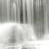 "Wagner Falls © 2009 Nova Mackentley Munising, MI  WFC  <div class=""ss-paypal-button""><div class=""ss-paypal-add-to-cart-section""><div class=""ss-paypal-product-options""><h4>Mat Sizes</h4><ul><li><a href=""https://www.paypal.com/cgi-bin/webscr?cmd=_cart&business=T77V5VKCW4K2U&lc=US&item_name=Wagner%20Falls%20%C2%A9%202009%20Nova%20Mackentley%20Munising%2C%20MI%20%20WFC&item_number=http%3A%2F%2Fwww.nightflightimages.com%2FGalleries-1%2FImpressions%2Fi-JSGw83J&button_subtype=products&no_note=0&cn=Add%20special%20instructions%20to%20the%20seller%3A&no_shipping=2&currency_code=USD&weight_unit=lbs&add=1&bn=PP-ShopCartBF%3Abtn_cart_SM.gif%3ANonHosted&on0=Mat%20Sizes&option_select0=5%20x%207&option_amount0=10.00&option_select1=8%20x%2010&option_amount1=18.00&option_select2=11%20x%2014&option_amount2=28.00&option_select3=card&option_amount3=4.00&option_index=0&charset=utf-8&submit=&os0=5%20x%207"" target=""paypal""><span>5 x 7 $11.00 USD</span><img src=""https://www.paypalobjects.com/en_US/i/btn/btn_cart_SM.gif""></a></li><li><a href=""https://www.paypal.com/cgi-bin/webscr?cmd=_cart&business=T77V5VKCW4K2U&lc=US&item_name=Wagner%20Falls%20%C2%A9%202009%20Nova%20Mackentley%20Munising%2C%20MI%20%20WFC&item_number=http%3A%2F%2Fwww.nightflightimages.com%2FGalleries-1%2FImpressions%2Fi-JSGw83J&button_subtype=products&no_note=0&cn=Add%20special%20instructions%20to%20the%20seller%3A&no_shipping=2&currency_code=USD&weight_unit=lbs&add=1&bn=PP-ShopCartBF%3Abtn_cart_SM.gif%3ANonHosted&on0=Mat%20Sizes&option_select0=5%20x%207&option_amount0=10.00&option_select1=8%20x%2010&option_amount1=18.00&option_select2=11%20x%2014&option_amount2=28.00&option_select3=card&option_amount3=4.00&option_index=0&charset=utf-8&submit=&os0=8%20x%2010"" target=""paypal""><span>8 x 10 $19.00 USD</span><img src=""https://www.paypalobjects.com/en_US/i/btn/btn_cart_SM.gif""></a></li><li><a href=""https://www.paypal.com/cgi-bin/webscr?cmd=_cart&business=T77V5VKCW4K2U&lc=US&item_name=Wagner%20Falls%20%C2%A9%202009%20Nova%20Mackentley%20Munising%2C%20MI%20%20WFC&item_number=http%3A%2F%2Fwww.nightflightimages.com%2FGalleries-1%2FImpressions%2Fi-JSGw83J&button_subtype=products&no_note=0&cn=Add%20special%20instructions%20to%20the%20seller%3A&no_shipping=2&currency_code=USD&weight_unit=lbs&add=1&bn=PP-ShopCartBF%3Abtn_cart_SM.gif%3ANonHosted&on0=Mat%20Sizes&option_select0=5%20x%207&option_amount0=10.00&option_select1=8%20x%2010&option_amount1=18.00&option_select2=11%20x%2014&option_amount2=28.00&option_select3=card&option_amount3=4.00&option_index=0&charset=utf-8&submit=&os0=11%20x%2014"" target=""paypal""><span>11 x 14 $29.00 USD</span><img src=""https://www.paypalobjects.com/en_US/i/btn/btn_cart_SM.gif""></a></li><li><a href=""https://www.paypal.com/cgi-bin/webscr?cmd=_cart&business=T77V5VKCW4K2U&lc=US&item_name=Wagner%20Falls%20%C2%A9%202009%20Nova%20Mackentley%20Munising%2C%20MI%20%20WFC&item_number=http%3A%2F%2Fwww.nightflightimages.com%2FGalleries-1%2FImpressions%2Fi-JSGw83J&button_subtype=products&no_note=0&cn=Add%20special%20instructions%20to%20the%20seller%3A&no_shipping=2&currency_code=USD&weight_unit=lbs&add=1&bn=PP-ShopCartBF%3Abtn_cart_SM.gif%3ANonHosted&on0=Mat%20Sizes&option_select0=5%20x%207&option_amount0=10.00&option_select1=8%20x%2010&option_amount1=18.00&option_select2=11%20x%2014&option_amount2=28.00&option_select3=card&option_amount3=4.00&option_index=0&charset=utf-8&submit=&os0=card"" target=""paypal""><span>card $5.00 USD</span><img src=""https://www.paypalobjects.com/en_US/i/btn/btn_cart_SM.gif""></a></li></ul></div></div> <div class=""ss-paypal-view-cart-section""><a href=""https://www.paypal.com/cgi-bin/webscr?cmd=_cart&business=T77V5VKCW4K2U&display=1&item_name=Wagner%20Falls%20%C2%A9%202009%20Nova%20Mackentley%20Munising%2C%20MI%20%20WFC&item_number=http%3A%2F%2Fwww.nightflightimages.com%2FGalleries-1%2FImpressions%2Fi-JSGw83J&charset=utf-8&submit="" target=""paypal"" class=""ss-paypal-submit-button""><img src=""https://www.paypalobjects.com/en_US/i/btn/btn_viewcart_LG.gif""></a></div></div><div class=""ss-paypal-button-end""></div>"