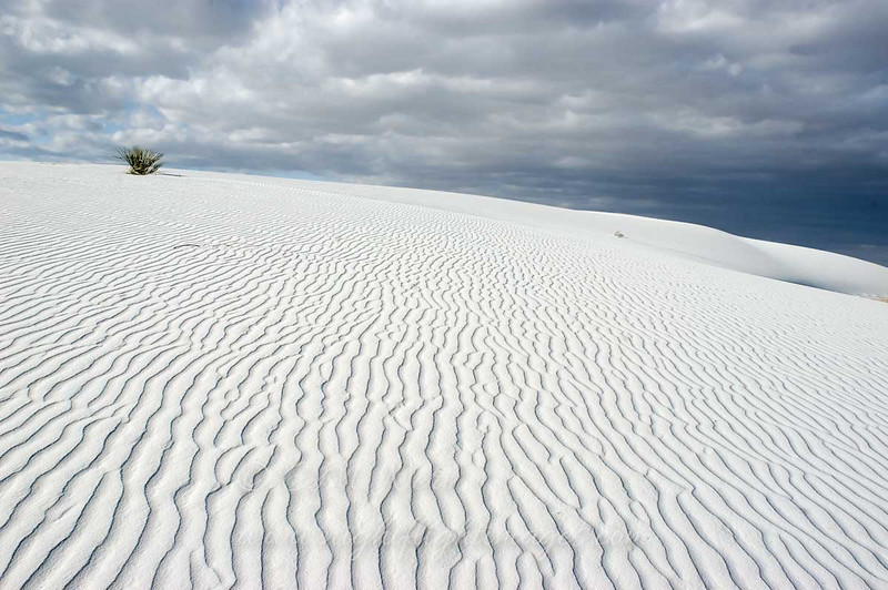 "White Sands © 2006 C. M. Neri.  White Sands National Monument, NM WSANDS  <div class=""ss-paypal-button""><div class=""ss-paypal-add-to-cart-section""><div class=""ss-paypal-product-options""><h4>Mat Sizes</h4><ul><li><a href=""https://www.paypal.com/cgi-bin/webscr?cmd=_cart&business=T77V5VKCW4K2U&lc=US&item_name=White%20Sands%20%C2%A9%202006%20C.%20M.%20Neri.%20%20White%20Sands%20National%20Monument%2C%20NM%20WSANDS&item_number=http%3A%2F%2Fwww.nightflightimages.com%2FGalleries-1%2FTravels%2Fi-VwgMphN&button_subtype=products&no_note=0&cn=Add%20special%20instructions%20to%20the%20seller%3A&no_shipping=2&currency_code=USD&weight_unit=lbs&add=1&bn=PP-ShopCartBF%3Abtn_cart_SM.gif%3ANonHosted&on0=Mat%20Sizes&option_select0=5%20x%207&option_amount0=10.00&option_select1=8%20x%2010&option_amount1=18.00&option_select2=11%20x%2014&option_amount2=28.00&option_select3=card&option_amount3=4.00&option_index=0&charset=utf-8&submit=&os0=5%20x%207"" target=""paypal""><span>5 x 7 $11.00 USD</span><img src=""https://www.paypalobjects.com/en_US/i/btn/btn_cart_SM.gif""></a></li><li><a href=""https://www.paypal.com/cgi-bin/webscr?cmd=_cart&business=T77V5VKCW4K2U&lc=US&item_name=White%20Sands%20%C2%A9%202006%20C.%20M.%20Neri.%20%20White%20Sands%20National%20Monument%2C%20NM%20WSANDS&item_number=http%3A%2F%2Fwww.nightflightimages.com%2FGalleries-1%2FTravels%2Fi-VwgMphN&button_subtype=products&no_note=0&cn=Add%20special%20instructions%20to%20the%20seller%3A&no_shipping=2&currency_code=USD&weight_unit=lbs&add=1&bn=PP-ShopCartBF%3Abtn_cart_SM.gif%3ANonHosted&on0=Mat%20Sizes&option_select0=5%20x%207&option_amount0=10.00&option_select1=8%20x%2010&option_amount1=18.00&option_select2=11%20x%2014&option_amount2=28.00&option_select3=card&option_amount3=4.00&option_index=0&charset=utf-8&submit=&os0=8%20x%2010"" target=""paypal""><span>8 x 10 $19.00 USD</span><img src=""https://www.paypalobjects.com/en_US/i/btn/btn_cart_SM.gif""></a></li><li><a href=""https://www.paypal.com/cgi-bin/webscr?cmd=_cart&business=T77V5VKCW4K2U&lc=US&item_name=White%20Sands%20%C2%A9%202006%20C.%20M.%20Neri.%20%20White%20Sands%20National%20Monument%2C%20NM%20WSANDS&item_number=http%3A%2F%2Fwww.nightflightimages.com%2FGalleries-1%2FTravels%2Fi-VwgMphN&button_subtype=products&no_note=0&cn=Add%20special%20instructions%20to%20the%20seller%3A&no_shipping=2&currency_code=USD&weight_unit=lbs&add=1&bn=PP-ShopCartBF%3Abtn_cart_SM.gif%3ANonHosted&on0=Mat%20Sizes&option_select0=5%20x%207&option_amount0=10.00&option_select1=8%20x%2010&option_amount1=18.00&option_select2=11%20x%2014&option_amount2=28.00&option_select3=card&option_amount3=4.00&option_index=0&charset=utf-8&submit=&os0=11%20x%2014"" target=""paypal""><span>11 x 14 $29.00 USD</span><img src=""https://www.paypalobjects.com/en_US/i/btn/btn_cart_SM.gif""></a></li><li><a href=""https://www.paypal.com/cgi-bin/webscr?cmd=_cart&business=T77V5VKCW4K2U&lc=US&item_name=White%20Sands%20%C2%A9%202006%20C.%20M.%20Neri.%20%20White%20Sands%20National%20Monument%2C%20NM%20WSANDS&item_number=http%3A%2F%2Fwww.nightflightimages.com%2FGalleries-1%2FTravels%2Fi-VwgMphN&button_subtype=products&no_note=0&cn=Add%20special%20instructions%20to%20the%20seller%3A&no_shipping=2&currency_code=USD&weight_unit=lbs&add=1&bn=PP-ShopCartBF%3Abtn_cart_SM.gif%3ANonHosted&on0=Mat%20Sizes&option_select0=5%20x%207&option_amount0=10.00&option_select1=8%20x%2010&option_amount1=18.00&option_select2=11%20x%2014&option_amount2=28.00&option_select3=card&option_amount3=4.00&option_index=0&charset=utf-8&submit=&os0=card"" target=""paypal""><span>card $5.00 USD</span><img src=""https://www.paypalobjects.com/en_US/i/btn/btn_cart_SM.gif""></a></li></ul></div></div> <div class=""ss-paypal-view-cart-section""><a href=""https://www.paypal.com/cgi-bin/webscr?cmd=_cart&business=T77V5VKCW4K2U&display=1&item_name=White%20Sands%20%C2%A9%202006%20C.%20M.%20Neri.%20%20White%20Sands%20National%20Monument%2C%20NM%20WSANDS&item_number=http%3A%2F%2Fwww.nightflightimages.com%2FGalleries-1%2FTravels%2Fi-VwgMphN&charset=utf-8&submit="" target=""paypal"" class=""ss-paypal-submit-button""><img src=""https://www.paypalobjects.com/en_US/i/btn/btn_viewcart_LG.gif""></a></div></div><div class=""ss-paypal-button-end""></div>"