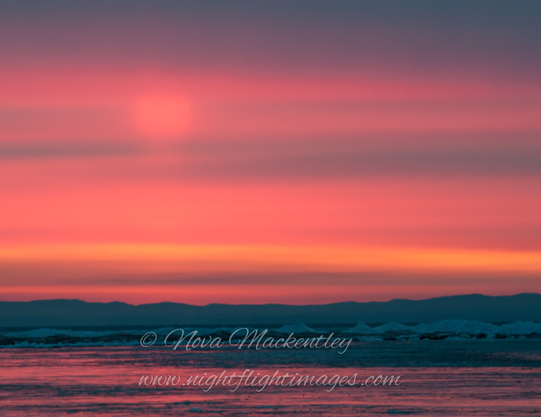 "Soft Sunrise, close up © 2013 Nova Mackentley Whitefish Point, MI  SUM  <div class=""ss-paypal-button""><div class=""ss-paypal-add-to-cart-section""><div class=""ss-paypal-product-options""><h4>Mat Sizes</h4><ul><li><a href=""https://www.paypal.com/cgi-bin/webscr?cmd=_cart&amp;business=T77V5VKCW4K2U&amp;lc=US&amp;item_name=Soft%20Sunrise%2C%20close%20up%20%C2%A9%202013%20Nova%20Mackentley%20Whitefish%20Point%2C%20MI%20%20SUM&amp;item_number=http%3A%2F%2Fwww.nightflightimages.com%2FGalleries-1%2FImpressions%2Fi-hP9cJ37&amp;button_subtype=products&amp;no_note=0&amp;cn=Add%20special%20instructions%20to%20the%20seller%3A&amp;no_shipping=2&amp;currency_code=USD&amp;weight_unit=lbs&amp;add=1&amp;bn=PP-ShopCartBF%3Abtn_cart_SM.gif%3ANonHosted&amp;on0=Mat%20Sizes&amp;option_select0=5%20x%207&amp;option_amount0=10.00&amp;option_select1=8%20x%2010&amp;option_amount1=18.00&amp;option_select2=11%20x%2014&amp;option_amount2=28.00&amp;option_select3=card&amp;option_amount3=4.00&amp;option_index=0&amp;charset=utf-8&amp;submit=&amp;os0=5%20x%207"" target=""paypal""><span>5 x 7 $11.00 USD</span><img src=""https://www.paypalobjects.com/en_US/i/btn/btn_cart_SM.gif""></a></li><li><a href=""https://www.paypal.com/cgi-bin/webscr?cmd=_cart&amp;business=T77V5VKCW4K2U&amp;lc=US&amp;item_name=Soft%20Sunrise%2C%20close%20up%20%C2%A9%202013%20Nova%20Mackentley%20Whitefish%20Point%2C%20MI%20%20SUM&amp;item_number=http%3A%2F%2Fwww.nightflightimages.com%2FGalleries-1%2FImpressions%2Fi-hP9cJ37&amp;button_subtype=products&amp;no_note=0&amp;cn=Add%20special%20instructions%20to%20the%20seller%3A&amp;no_shipping=2&amp;currency_code=USD&amp;weight_unit=lbs&amp;add=1&amp;bn=PP-ShopCartBF%3Abtn_cart_SM.gif%3ANonHosted&amp;on0=Mat%20Sizes&amp;option_select0=5%20x%207&amp;option_amount0=10.00&amp;option_select1=8%20x%2010&amp;option_amount1=18.00&amp;option_select2=11%20x%2014&amp;option_amount2=28.00&amp;option_select3=card&amp;option_amount3=4.00&amp;option_index=0&amp;charset=utf-8&amp;submit=&amp;os0=8%20x%2010"" target=""paypal""><span>8 x 10 $19.00 USD</span><img src=""https://www.paypalobjects.com/en_US/i/btn/btn_cart_SM.gif""></a></li><li><a href=""https://www.paypal.com/cgi-bin/webscr?cmd=_cart&amp;business=T77V5VKCW4K2U&amp;lc=US&amp;item_name=Soft%20Sunrise%2C%20close%20up%20%C2%A9%202013%20Nova%20Mackentley%20Whitefish%20Point%2C%20MI%20%20SUM&amp;item_number=http%3A%2F%2Fwww.nightflightimages.com%2FGalleries-1%2FImpressions%2Fi-hP9cJ37&amp;button_subtype=products&amp;no_note=0&amp;cn=Add%20special%20instructions%20to%20the%20seller%3A&amp;no_shipping=2&amp;currency_code=USD&amp;weight_unit=lbs&amp;add=1&amp;bn=PP-ShopCartBF%3Abtn_cart_SM.gif%3ANonHosted&amp;on0=Mat%20Sizes&amp;option_select0=5%20x%207&amp;option_amount0=10.00&amp;option_select1=8%20x%2010&amp;option_amount1=18.00&amp;option_select2=11%20x%2014&amp;option_amount2=28.00&amp;option_select3=card&amp;option_amount3=4.00&amp;option_index=0&amp;charset=utf-8&amp;submit=&amp;os0=11%20x%2014"" target=""paypal""><span>11 x 14 $29.00 USD</span><img src=""https://www.paypalobjects.com/en_US/i/btn/btn_cart_SM.gif""></a></li><li><a href=""https://www.paypal.com/cgi-bin/webscr?cmd=_cart&amp;business=T77V5VKCW4K2U&amp;lc=US&amp;item_name=Soft%20Sunrise%2C%20close%20up%20%C2%A9%202013%20Nova%20Mackentley%20Whitefish%20Point%2C%20MI%20%20SUM&amp;item_number=http%3A%2F%2Fwww.nightflightimages.com%2FGalleries-1%2FImpressions%2Fi-hP9cJ37&amp;button_subtype=products&amp;no_note=0&amp;cn=Add%20special%20instructions%20to%20the%20seller%3A&amp;no_shipping=2&amp;currency_code=USD&amp;weight_unit=lbs&amp;add=1&amp;bn=PP-ShopCartBF%3Abtn_cart_SM.gif%3ANonHosted&amp;on0=Mat%20Sizes&amp;option_select0=5%20x%207&amp;option_amount0=10.00&amp;option_select1=8%20x%2010&amp;option_amount1=18.00&amp;option_select2=11%20x%2014&amp;option_amount2=28.00&amp;option_select3=card&amp;option_amount3=4.00&amp;option_index=0&amp;charset=utf-8&amp;submit=&amp;os0=card"" target=""paypal""><span>card $5.00 USD</span><img src=""https://www.paypalobjects.com/en_US/i/btn/btn_cart_SM.gif""></a></li></ul></div></div> <div class=""ss-paypal-view-cart-section""><a href=""https://www.paypal.com/cgi-bin/webscr?cmd=_cart&amp;business=T77V5VKCW4K2U&amp;display=1&amp;item_name=Soft%20Sunrise%2C%20close%20up%20%C2%A9%202013%20Nova%20Mackentley%20Whitefish%20Point%2C%20MI%20%20SUM&amp;item_number=http%3A%2F%2Fwww.nightflightimages.com%2FGalleries-1%2FImpressions%2Fi-hP9cJ37&amp;charset=utf-8&amp;submit="" target=""paypal"" class=""ss-paypal-submit-button""><img src=""https://www.paypalobjects.com/en_US/i/btn/btn_viewcart_LG.gif""></a></div></div><div class=""ss-paypal-button-end""></div>"