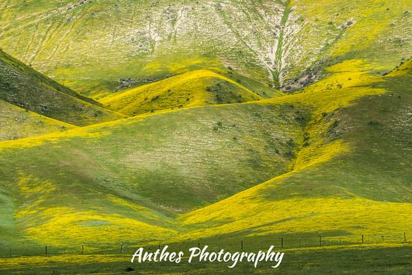 Carrizo Plains, California