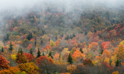 2015 Graveyard Fields, Blue Ridge Parkway, North Carolina