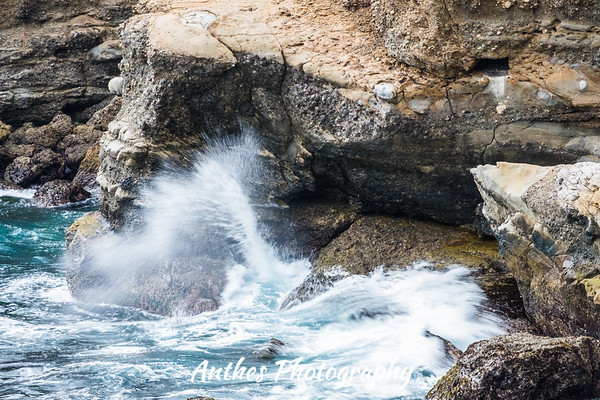 Point Lobos National State Reserve, California