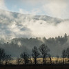 2017 Cades Cove, Great Smoky Mountains National Park, Tennessee