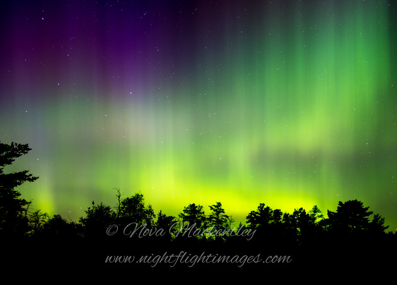 """Northern Lights © 2016 Nova Mackentley Whitefish Point, MI NLB2  <div class=""""ss-paypal-button""""><div class=""""ss-paypal-add-to-cart-section""""><div class=""""ss-paypal-product-options""""><h4>Mat Sizes</h4><ul><li><a href=""""https://www.paypal.com/cgi-bin/webscr?cmd=_cart&business=T77V5VKCW4K2U&lc=US&item_name=Northern%20Lights%20%C2%A9%202016%20Nova%20Mackentley%20Whitefish%20Point%2C%20MI%20NLB2&item_number=http%3A%2F%2Fwww.nightflightimages.com%2FGalleries-1%2FNew%2Fi-9xFzZwF&button_subtype=products&no_note=0&cn=Add%20special%20instructions%20to%20the%20seller%3A&no_shipping=2&currency_code=USD&weight_unit=lbs&add=1&bn=PP-ShopCartBF%3Abtn_cart_SM.gif%3ANonHosted&on0=Mat%20Sizes&option_select0=5%20x%207&option_amount0=10.00&option_select1=8%20x%2010&option_amount1=18.00&option_select2=11%20x%2014&option_amount2=28.00&option_select3=card&option_amount3=4.00&option_index=0&charset=utf-8&submit=&os0=5%20x%207"""" target=""""paypal""""><span>5 x 7 $11.00 USD</span><img src=""""https://www.paypalobjects.com/en_US/i/btn/btn_cart_SM.gif""""></a></li><li><a href=""""https://www.paypal.com/cgi-bin/webscr?cmd=_cart&business=T77V5VKCW4K2U&lc=US&item_name=Northern%20Lights%20%C2%A9%202016%20Nova%20Mackentley%20Whitefish%20Point%2C%20MI%20NLB2&item_number=http%3A%2F%2Fwww.nightflightimages.com%2FGalleries-1%2FNew%2Fi-9xFzZwF&button_subtype=products&no_note=0&cn=Add%20special%20instructions%20to%20the%20seller%3A&no_shipping=2&currency_code=USD&weight_unit=lbs&add=1&bn=PP-ShopCartBF%3Abtn_cart_SM.gif%3ANonHosted&on0=Mat%20Sizes&option_select0=5%20x%207&option_amount0=10.00&option_select1=8%20x%2010&option_amount1=18.00&option_select2=11%20x%2014&option_amount2=28.00&option_select3=card&option_amount3=4.00&option_index=0&charset=utf-8&submit=&os0=8%20x%2010"""" target=""""paypal""""><span>8 x 10 $19.00 USD</span><img src=""""https://www.paypalobjects.com/en_US/i/btn/btn_cart_SM.gif""""></a></li><li><a href=""""https://www.paypal.com/cgi-bin/webscr?cmd=_cart&business=T77V5VKCW4K2U&lc=US&item_name=Northern%20Lights%20%C2%A9%2020"""