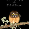 "Northern Saw-whet Owl © 2009 Chris M Neri Whitefish Point, MI FTN  <div class=""ss-paypal-button""><div class=""ss-paypal-add-to-cart-section""><div class=""ss-paypal-product-options""><h4>Mat Sizes</h4><ul><li><a href=""https://www.paypal.com/cgi-bin/webscr?cmd=_cart&amp;business=T77V5VKCW4K2U&amp;lc=US&amp;item_name=Northern%20Saw-whet%20Owl%20%C2%A9%202009%20Chris%20M%20Neri%20Whitefish%20Point%2C%20MI%20FTN&amp;item_number=http%3A%2F%2Fwww.nightflightimages.com%2FGalleries-1%2FNew%2Fi-QwSBNrp&amp;button_subtype=products&amp;no_note=0&amp;cn=Add%20special%20instructions%20to%20the%20seller%3A&amp;no_shipping=2&amp;currency_code=USD&amp;weight_unit=lbs&amp;add=1&amp;bn=PP-ShopCartBF%3Abtn_cart_SM.gif%3ANonHosted&amp;on0=Mat%20Sizes&amp;option_select0=5%20x%207&amp;option_amount0=12.00&amp;option_select1=8%20x%2010&amp;option_amount1=19.00&amp;option_select2=11%20x%2014&amp;option_amount2=29.00&amp;option_select3=card&amp;option_amount3=5.00&amp;option_index=0&amp;charset=utf-8&amp;submit=&amp;os0=5%20x%207"" target=""paypal""><span>5 x 7 $12.00 USD</span><img src=""https://www.paypalobjects.com/en_US/i/btn/btn_cart_SM.gif""></a></li><li><a href=""https://www.paypal.com/cgi-bin/webscr?cmd=_cart&amp;business=T77V5VKCW4K2U&amp;lc=US&amp;item_name=Northern%20Saw-whet%20Owl%20%C2%A9%202009%20Chris%20M%20Neri%20Whitefish%20Point%2C%20MI%20FTN&amp;item_number=http%3A%2F%2Fwww.nightflightimages.com%2FGalleries-1%2FNew%2Fi-QwSBNrp&amp;button_subtype=products&amp;no_note=0&amp;cn=Add%20special%20instructions%20to%20the%20seller%3A&amp;no_shipping=2&amp;currency_code=USD&amp;weight_unit=lbs&amp;add=1&amp;bn=PP-ShopCartBF%3Abtn_cart_SM.gif%3ANonHosted&amp;on0=Mat%20Sizes&amp;option_select0=5%20x%207&amp;option_amount0=12.00&amp;option_select1=8%20x%2010&amp;option_amount1=19.00&amp;option_select2=11%20x%2014&amp;option_amount2=29.00&amp;option_select3=card&amp;option_amount3=5.00&amp;option_index=0&amp;charset=utf-8&amp;submit=&amp;os0=8%20x%2010"" target=""paypal""><span>8 x 10 $19.00 USD</span><img src=""https://www.paypalobjects.com/en_US/i/btn/btn_cart_SM.gif""></a></li><li><a href=""https://www.paypal.com/cgi-bin/webscr?cmd=_cart&amp;business=T77V5VKCW4K2U&amp;lc=US&amp;item_name=Northern%20Saw-whet%20Owl%20%C2%A9%202009%20Chris%20M%20Neri%20Whitefish%20Point%2C%20MI%20FTN&amp;item_number=http%3A%2F%2Fwww.nightflightimages.com%2FGalleries-1%2FNew%2Fi-QwSBNrp&amp;button_subtype=products&amp;no_note=0&amp;cn=Add%20special%20instructions%20to%20the%20seller%3A&amp;no_shipping=2&amp;currency_code=USD&amp;weight_unit=lbs&amp;add=1&amp;bn=PP-ShopCartBF%3Abtn_cart_SM.gif%3ANonHosted&amp;on0=Mat%20Sizes&amp;option_select0=5%20x%207&amp;option_amount0=12.00&amp;option_select1=8%20x%2010&amp;option_amount1=19.00&amp;option_select2=11%20x%2014&amp;option_amount2=29.00&amp;option_select3=card&amp;option_amount3=5.00&amp;option_index=0&amp;charset=utf-8&amp;submit=&amp;os0=11%20x%2014"" target=""paypal""><span>11 x 14 $29.00 USD</span><img src=""https://www.paypalobjects.com/en_US/i/btn/btn_cart_SM.gif""></a></li><li><a href=""https://www.paypal.com/cgi-bin/webscr?cmd=_cart&amp;business=T77V5VKCW4K2U&amp;lc=US&amp;item_name=Northern%20Saw-whet%20Owl%20%C2%A9%202009%20Chris%20M%20Neri%20Whitefish%20Point%2C%20MI%20FTN&amp;item_number=http%3A%2F%2Fwww.nightflightimages.com%2FGalleries-1%2FNew%2Fi-QwSBNrp&amp;button_subtype=products&amp;no_note=0&amp;cn=Add%20special%20instructions%20to%20the%20seller%3A&amp;no_shipping=2&amp;currency_code=USD&amp;weight_unit=lbs&amp;add=1&amp;bn=PP-ShopCartBF%3Abtn_cart_SM.gif%3ANonHosted&amp;on0=Mat%20Sizes&amp;option_select0=5%20x%207&amp;option_amount0=12.00&amp;option_select1=8%20x%2010&amp;option_amount1=19.00&amp;option_select2=11%20x%2014&amp;option_amount2=29.00&amp;option_select3=card&amp;option_amount3=5.00&amp;option_index=0&amp;charset=utf-8&amp;submit=&amp;os0=card"" target=""paypal""><span>card $5.00 USD</span><img src=""https://www.paypalobjects.com/en_US/i/btn/btn_cart_SM.gif""></a></li></ul></div></div> <div class=""ss-paypal-view-cart-section""><a href=""https://www.paypal.com/cgi-bin/webscr?cmd=_cart&amp;business=T77V5VKCW4K2U&amp;display=1&amp;item_name=Northern%20Saw-whet%20Owl%20%C2%A9%202009%20Chris%20M%20Neri%20Whitefish%20Point%2C%20MI%20FTN&amp;item_number=http%3A%2F%2Fwww.nightflightimages.com%2FGalleries-1%2FNew%2Fi-QwSBNrp&amp;charset=utf-8&amp;submit="" target=""paypal"" class=""ss-paypal-submit-button""><img src=""https://www.paypalobjects.com/en_US/i/btn/btn_viewcart_LG.gif""></a></div></div><div class=""ss-paypal-button-end""></div>"