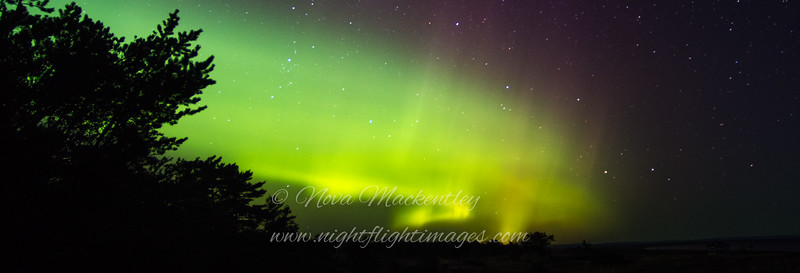 """Northern Lights at the tip © 2016 Nova Mackentley Whitefish Point, MI NLU-long  <div class=""""ss-paypal-button""""><div class=""""ss-paypal-add-to-cart-section""""><div class=""""ss-paypal-product-options""""><h4>Mat Sizes</h4><ul><li><a href=""""https://www.paypal.com/cgi-bin/webscr?cmd=_cart&business=T77V5VKCW4K2U&lc=US&item_name=Northern%20Lights%20at%20the%20tip%20%C2%A9%202016%20Nova%20Mackentley%20Whitefish%20Point%2C%20MI%20NLU-long&item_number=http%3A%2F%2Fwww.nightflightimages.com%2FGalleries-1%2FNew%2Fi-vhVcC5x&button_subtype=products&no_note=0&cn=Add%20special%20instructions%20to%20the%20seller%3A&no_shipping=2&currency_code=USD&weight_unit=lbs&add=1&bn=PP-ShopCartBF%3Abtn_cart_SM.gif%3ANonHosted&on0=Mat%20Sizes&option_select0=5%20x%207&option_amount0=10.00&option_select1=8%20x%2010&option_amount1=18.00&option_select2=11%20x%2014&option_amount2=28.00&option_select3=card&option_amount3=4.00&option_index=0&charset=utf-8&submit=&os0=5%20x%207"""" target=""""paypal""""><span>5 x 7 $11.00 USD</span><img src=""""https://www.paypalobjects.com/en_US/i/btn/btn_cart_SM.gif""""></a></li><li><a href=""""https://www.paypal.com/cgi-bin/webscr?cmd=_cart&business=T77V5VKCW4K2U&lc=US&item_name=Northern%20Lights%20at%20the%20tip%20%C2%A9%202016%20Nova%20Mackentley%20Whitefish%20Point%2C%20MI%20NLU-long&item_number=http%3A%2F%2Fwww.nightflightimages.com%2FGalleries-1%2FNew%2Fi-vhVcC5x&button_subtype=products&no_note=0&cn=Add%20special%20instructions%20to%20the%20seller%3A&no_shipping=2&currency_code=USD&weight_unit=lbs&add=1&bn=PP-ShopCartBF%3Abtn_cart_SM.gif%3ANonHosted&on0=Mat%20Sizes&option_select0=5%20x%207&option_amount0=10.00&option_select1=8%20x%2010&option_amount1=18.00&option_select2=11%20x%2014&option_amount2=28.00&option_select3=card&option_amount3=4.00&option_index=0&charset=utf-8&submit=&os0=8%20x%2010"""" target=""""paypal""""><span>8 x 10 $19.00 USD</span><img src=""""https://www.paypalobjects.com/en_US/i/btn/btn_cart_SM.gif""""></a></li><li><a href=""""https://www.paypal.com/cgi-bin/webscr?cmd=_cart&business=T77V"""