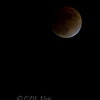 "Lunar Eclipse © 2006 C. M. Neri Huntingdon Valley, PA LUNARE2  <div class=""ss-paypal-button""><div class=""ss-paypal-add-to-cart-section""><div class=""ss-paypal-product-options""><h4>Mat Sizes</h4><ul><li><a href=""https://www.paypal.com/cgi-bin/webscr?cmd=_cart&business=T77V5VKCW4K2U&lc=US&item_name=Lunar%20Eclipse%20%C2%A9%202006%20C.%20M.%20Neri%20Huntingdon%20Valley%2C%20PA%20LUNARE2&item_number=http%3A%2F%2Fwww.nightflightimages.com%2FGalleries-1%2FNightscapes%2Fi-GTKpbW2&button_subtype=products&no_note=0&cn=Add%20special%20instructions%20to%20the%20seller%3A&no_shipping=2&currency_code=USD&weight_unit=lbs&add=1&bn=PP-ShopCartBF%3Abtn_cart_SM.gif%3ANonHosted&on0=Mat%20Sizes&option_select0=5%20x%207&option_amount0=10.00&option_select1=8%20x%2010&option_amount1=18.00&option_select2=11%20x%2014&option_amount2=28.00&option_select3=card&option_amount3=4.00&option_index=0&charset=utf-8&submit=&os0=5%20x%207"" target=""paypal""><span>5 x 7 $11.00 USD</span><img src=""https://www.paypalobjects.com/en_US/i/btn/btn_cart_SM.gif""></a></li><li><a href=""https://www.paypal.com/cgi-bin/webscr?cmd=_cart&business=T77V5VKCW4K2U&lc=US&item_name=Lunar%20Eclipse%20%C2%A9%202006%20C.%20M.%20Neri%20Huntingdon%20Valley%2C%20PA%20LUNARE2&item_number=http%3A%2F%2Fwww.nightflightimages.com%2FGalleries-1%2FNightscapes%2Fi-GTKpbW2&button_subtype=products&no_note=0&cn=Add%20special%20instructions%20to%20the%20seller%3A&no_shipping=2&currency_code=USD&weight_unit=lbs&add=1&bn=PP-ShopCartBF%3Abtn_cart_SM.gif%3ANonHosted&on0=Mat%20Sizes&option_select0=5%20x%207&option_amount0=10.00&option_select1=8%20x%2010&option_amount1=18.00&option_select2=11%20x%2014&option_amount2=28.00&option_select3=card&option_amount3=4.00&option_index=0&charset=utf-8&submit=&os0=8%20x%2010"" target=""paypal""><span>8 x 10 $19.00 USD</span><img src=""https://www.paypalobjects.com/en_US/i/btn/btn_cart_SM.gif""></a></li><li><a href=""https://www.paypal.com/cgi-bin/webscr?cmd=_cart&business=T77V5VKCW4K2U&lc=US&item_name=Lunar%20Eclipse%20%C2%A9%202006%20C.%20M.%20Neri%20Huntingdon%20Valley%2C%20PA%20LUNARE2&item_number=http%3A%2F%2Fwww.nightflightimages.com%2FGalleries-1%2FNightscapes%2Fi-GTKpbW2&button_subtype=products&no_note=0&cn=Add%20special%20instructions%20to%20the%20seller%3A&no_shipping=2&currency_code=USD&weight_unit=lbs&add=1&bn=PP-ShopCartBF%3Abtn_cart_SM.gif%3ANonHosted&on0=Mat%20Sizes&option_select0=5%20x%207&option_amount0=10.00&option_select1=8%20x%2010&option_amount1=18.00&option_select2=11%20x%2014&option_amount2=28.00&option_select3=card&option_amount3=4.00&option_index=0&charset=utf-8&submit=&os0=11%20x%2014"" target=""paypal""><span>11 x 14 $29.00 USD</span><img src=""https://www.paypalobjects.com/en_US/i/btn/btn_cart_SM.gif""></a></li><li><a href=""https://www.paypal.com/cgi-bin/webscr?cmd=_cart&business=T77V5VKCW4K2U&lc=US&item_name=Lunar%20Eclipse%20%C2%A9%202006%20C.%20M.%20Neri%20Huntingdon%20Valley%2C%20PA%20LUNARE2&item_number=http%3A%2F%2Fwww.nightflightimages.com%2FGalleries-1%2FNightscapes%2Fi-GTKpbW2&button_subtype=products&no_note=0&cn=Add%20special%20instructions%20to%20the%20seller%3A&no_shipping=2&currency_code=USD&weight_unit=lbs&add=1&bn=PP-ShopCartBF%3Abtn_cart_SM.gif%3ANonHosted&on0=Mat%20Sizes&option_select0=5%20x%207&option_amount0=10.00&option_select1=8%20x%2010&option_amount1=18.00&option_select2=11%20x%2014&option_amount2=28.00&option_select3=card&option_amount3=4.00&option_index=0&charset=utf-8&submit=&os0=card"" target=""paypal""><span>card $5.00 USD</span><img src=""https://www.paypalobjects.com/en_US/i/btn/btn_cart_SM.gif""></a></li></ul></div></div> <div class=""ss-paypal-view-cart-section""><a href=""https://www.paypal.com/cgi-bin/webscr?cmd=_cart&business=T77V5VKCW4K2U&display=1&item_name=Lunar%20Eclipse%20%C2%A9%202006%20C.%20M.%20Neri%20Huntingdon%20Valley%2C%20PA%20LUNARE2&item_number=http%3A%2F%2Fwww.nightflightimages.com%2FGalleries-1%2FNightscapes%2Fi-GTKpbW2&charset=utf-8&submit="" target=""paypal"" class=""ss-paypal-submit-button""><img src=""https://www.paypalobjects.com/en_US/i/btn/btn_viewcart_LG.gif""></a></div></div><div class=""ss-paypal-button-end""></div>"