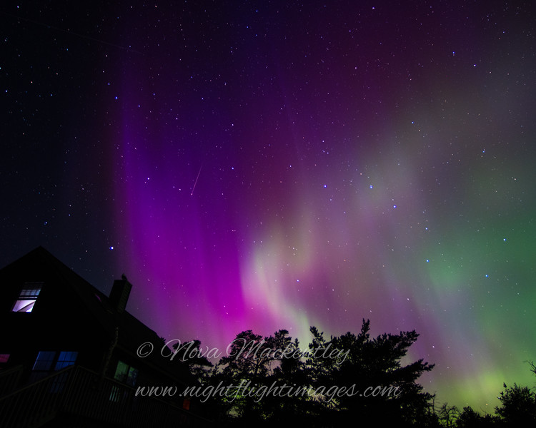 "Northern Lights swirl © 2016 Nova Mackentley Whitefish Point, MI NLH  <div class=""ss-paypal-button""><div class=""ss-paypal-add-to-cart-section""><div class=""ss-paypal-product-options""><h4>Mat Sizes</h4><ul><li><a href=""https://www.paypal.com/cgi-bin/webscr?cmd=_cart&business=T77V5VKCW4K2U&lc=US&item_name=Northern%20Lights%20swirl%20%C2%A9%202016%20Nova%20Mackentley%20Whitefish%20Point%2C%20MI%20NLH&item_number=http%3A%2F%2Fwww.nightflightimages.com%2FGalleries-1%2FNew%2Fi-bH9FhXv&button_subtype=products&no_note=0&cn=Add%20special%20instructions%20to%20the%20seller%3A&no_shipping=2&currency_code=USD&weight_unit=lbs&add=1&bn=PP-ShopCartBF%3Abtn_cart_SM.gif%3ANonHosted&on0=Mat%20Sizes&option_select0=5%20x%207&option_amount0=10.00&option_select1=8%20x%2010&option_amount1=18.00&option_select2=11%20x%2014&option_amount2=28.00&option_select3=card&option_amount3=4.00&option_index=0&charset=utf-8&submit=&os0=5%20x%207"" target=""paypal""><span>5 x 7 $11.00 USD</span><img src=""https://www.paypalobjects.com/en_US/i/btn/btn_cart_SM.gif""></a></li><li><a href=""https://www.paypal.com/cgi-bin/webscr?cmd=_cart&business=T77V5VKCW4K2U&lc=US&item_name=Northern%20Lights%20swirl%20%C2%A9%202016%20Nova%20Mackentley%20Whitefish%20Point%2C%20MI%20NLH&item_number=http%3A%2F%2Fwww.nightflightimages.com%2FGalleries-1%2FNew%2Fi-bH9FhXv&button_subtype=products&no_note=0&cn=Add%20special%20instructions%20to%20the%20seller%3A&no_shipping=2&currency_code=USD&weight_unit=lbs&add=1&bn=PP-ShopCartBF%3Abtn_cart_SM.gif%3ANonHosted&on0=Mat%20Sizes&option_select0=5%20x%207&option_amount0=10.00&option_select1=8%20x%2010&option_amount1=18.00&option_select2=11%20x%2014&option_amount2=28.00&option_select3=card&option_amount3=4.00&option_index=0&charset=utf-8&submit=&os0=8%20x%2010"" target=""paypal""><span>8 x 10 $19.00 USD</span><img src=""https://www.paypalobjects.com/en_US/i/btn/btn_cart_SM.gif""></a></li><li><a href=""https://www.paypal.com/cgi-bin/webscr?cmd=_cart&business=T77V5VKCW4K2U&lc=US&item_name=Northern%20Lights%20swirl%20%C2%A9%202016%20Nova%20Mackentley%20Whitefish%20Point%2C%20MI%20NLH&item_number=http%3A%2F%2Fwww.nightflightimages.com%2FGalleries-1%2FNew%2Fi-bH9FhXv&button_subtype=products&no_note=0&cn=Add%20special%20instructions%20to%20the%20seller%3A&no_shipping=2&currency_code=USD&weight_unit=lbs&add=1&bn=PP-ShopCartBF%3Abtn_cart_SM.gif%3ANonHosted&on0=Mat%20Sizes&option_select0=5%20x%207&option_amount0=10.00&option_select1=8%20x%2010&option_amount1=18.00&option_select2=11%20x%2014&option_amount2=28.00&option_select3=card&option_amount3=4.00&option_index=0&charset=utf-8&submit=&os0=11%20x%2014"" target=""paypal""><span>11 x 14 $29.00 USD</span><img src=""https://www.paypalobjects.com/en_US/i/btn/btn_cart_SM.gif""></a></li><li><a href=""https://www.paypal.com/cgi-bin/webscr?cmd=_cart&business=T77V5VKCW4K2U&lc=US&item_name=Northern%20Lights%20swirl%20%C2%A9%202016%20Nova%20Mackentley%20Whitefish%20Point%2C%20MI%20NLH&item_number=http%3A%2F%2Fwww.nightflightimages.com%2FGalleries-1%2FNew%2Fi-bH9FhXv&button_subtype=products&no_note=0&cn=Add%20special%20instructions%20to%20the%20seller%3A&no_shipping=2&currency_code=USD&weight_unit=lbs&add=1&bn=PP-ShopCartBF%3Abtn_cart_SM.gif%3ANonHosted&on0=Mat%20Sizes&option_select0=5%20x%207&option_amount0=10.00&option_select1=8%20x%2010&option_amount1=18.00&option_select2=11%20x%2014&option_amount2=28.00&option_select3=card&option_amount3=4.00&option_index=0&charset=utf-8&submit=&os0=card"" target=""paypal""><span>card $5.00 USD</span><img src=""https://www.paypalobjects.com/en_US/i/btn/btn_cart_SM.gif""></a></li></ul></div></div> <div class=""ss-paypal-view-cart-section""><a href=""https://www.paypal.com/cgi-bin/webscr?cmd=_cart&business=T77V5VKCW4K2U&display=1&item_name=Northern%20Lights%20swirl%20%C2%A9%202016%20Nova%20Mackentley%20Whitefish%20Point%2C%20MI%20NLH&item_number=http%3A%2F%2Fwww.nightflightimages.com%2FGalleries-1%2FNew%2Fi-bH9FhXv&charset=utf-8&submit="" target=""paypal"" class=""ss-paypal-submit-button""><img src=""https://www.paypalobjects.com/en_US/i/btn/btn_viewcart_LG.gif""></a></div></div><div class=""ss-paypal-button-end""></div>"