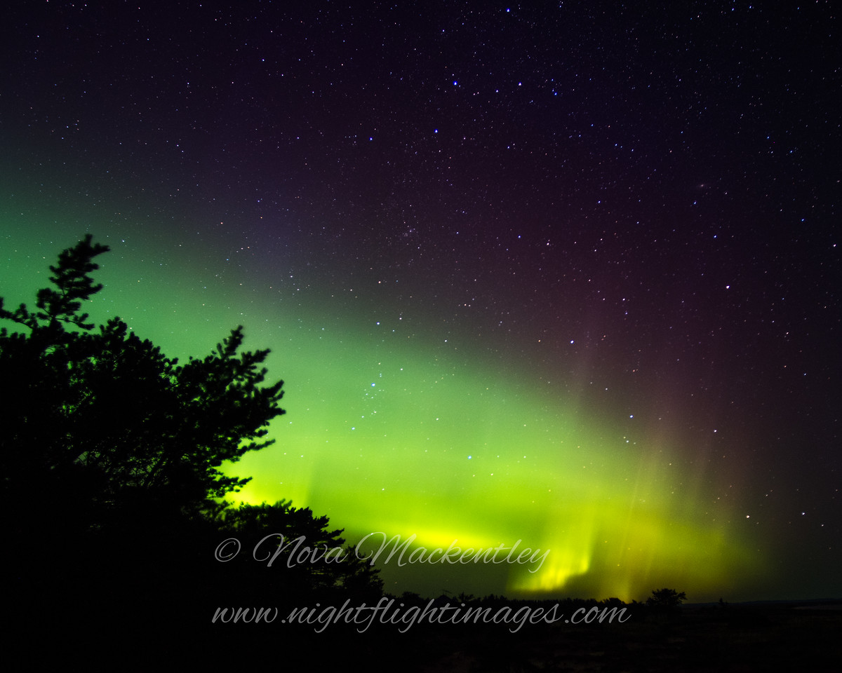 "Northern Lights at the tip © 2016 Nova Mackentley Whitefish Point, MI NLU  <div class=""ss-paypal-button""><div class=""ss-paypal-add-to-cart-section""><div class=""ss-paypal-product-options""><h4>Mat Sizes</h4><ul><li><a href=""https://www.paypal.com/cgi-bin/webscr?cmd=_cart&business=T77V5VKCW4K2U&lc=US&item_name=Northern%20Lights%20at%20the%20tip%20%C2%A9%202016%20Nova%20Mackentley%20Whitefish%20Point%2C%20MI%20NLU&item_number=http%3A%2F%2Fwww.nightflightimages.com%2FGalleries-1%2FNew%2Fi-n4qFkgm&button_subtype=products&no_note=0&cn=Add%20special%20instructions%20to%20the%20seller%3A&no_shipping=2&currency_code=USD&weight_unit=lbs&add=1&bn=PP-ShopCartBF%3Abtn_cart_SM.gif%3ANonHosted&on0=Mat%20Sizes&option_select0=5%20x%207&option_amount0=10.00&option_select1=8%20x%2010&option_amount1=18.00&option_select2=11%20x%2014&option_amount2=28.00&option_select3=card&option_amount3=4.00&option_index=0&charset=utf-8&submit=&os0=5%20x%207"" target=""paypal""><span>5 x 7 $11.00 USD</span><img src=""https://www.paypalobjects.com/en_US/i/btn/btn_cart_SM.gif""></a></li><li><a href=""https://www.paypal.com/cgi-bin/webscr?cmd=_cart&business=T77V5VKCW4K2U&lc=US&item_name=Northern%20Lights%20at%20the%20tip%20%C2%A9%202016%20Nova%20Mackentley%20Whitefish%20Point%2C%20MI%20NLU&item_number=http%3A%2F%2Fwww.nightflightimages.com%2FGalleries-1%2FNew%2Fi-n4qFkgm&button_subtype=products&no_note=0&cn=Add%20special%20instructions%20to%20the%20seller%3A&no_shipping=2&currency_code=USD&weight_unit=lbs&add=1&bn=PP-ShopCartBF%3Abtn_cart_SM.gif%3ANonHosted&on0=Mat%20Sizes&option_select0=5%20x%207&option_amount0=10.00&option_select1=8%20x%2010&option_amount1=18.00&option_select2=11%20x%2014&option_amount2=28.00&option_select3=card&option_amount3=4.00&option_index=0&charset=utf-8&submit=&os0=8%20x%2010"" target=""paypal""><span>8 x 10 $19.00 USD</span><img src=""https://www.paypalobjects.com/en_US/i/btn/btn_cart_SM.gif""></a></li><li><a href=""https://www.paypal.com/cgi-bin/webscr?cmd=_cart&business=T77V5VKCW4K2U&lc=US&item_name=Northern%20Lights%20at%20the%20tip%20%C2%A9%202016%20Nova%20Mackentley%20Whitefish%20Point%2C%20MI%20NLU&item_number=http%3A%2F%2Fwww.nightflightimages.com%2FGalleries-1%2FNew%2Fi-n4qFkgm&button_subtype=products&no_note=0&cn=Add%20special%20instructions%20to%20the%20seller%3A&no_shipping=2&currency_code=USD&weight_unit=lbs&add=1&bn=PP-ShopCartBF%3Abtn_cart_SM.gif%3ANonHosted&on0=Mat%20Sizes&option_select0=5%20x%207&option_amount0=10.00&option_select1=8%20x%2010&option_amount1=18.00&option_select2=11%20x%2014&option_amount2=28.00&option_select3=card&option_amount3=4.00&option_index=0&charset=utf-8&submit=&os0=11%20x%2014"" target=""paypal""><span>11 x 14 $29.00 USD</span><img src=""https://www.paypalobjects.com/en_US/i/btn/btn_cart_SM.gif""></a></li><li><a href=""https://www.paypal.com/cgi-bin/webscr?cmd=_cart&business=T77V5VKCW4K2U&lc=US&item_name=Northern%20Lights%20at%20the%20tip%20%C2%A9%202016%20Nova%20Mackentley%20Whitefish%20Point%2C%20MI%20NLU&item_number=http%3A%2F%2Fwww.nightflightimages.com%2FGalleries-1%2FNew%2Fi-n4qFkgm&button_subtype=products&no_note=0&cn=Add%20special%20instructions%20to%20the%20seller%3A&no_shipping=2&currency_code=USD&weight_unit=lbs&add=1&bn=PP-ShopCartBF%3Abtn_cart_SM.gif%3ANonHosted&on0=Mat%20Sizes&option_select0=5%20x%207&option_amount0=10.00&option_select1=8%20x%2010&option_amount1=18.00&option_select2=11%20x%2014&option_amount2=28.00&option_select3=card&option_amount3=4.00&option_index=0&charset=utf-8&submit=&os0=card"" target=""paypal""><span>card $5.00 USD</span><img src=""https://www.paypalobjects.com/en_US/i/btn/btn_cart_SM.gif""></a></li></ul></div></div> <div class=""ss-paypal-view-cart-section""><a href=""https://www.paypal.com/cgi-bin/webscr?cmd=_cart&business=T77V5VKCW4K2U&display=1&item_name=Northern%20Lights%20at%20the%20tip%20%C2%A9%202016%20Nova%20Mackentley%20Whitefish%20Point%2C%20MI%20NLU&item_number=http%3A%2F%2Fwww.nightflightimages.com%2FGalleries-1%2FNew%2Fi-n4qFkgm&charset=utf-8&submit="" target=""paypal"" class=""ss-paypal-submit-button""><img src=""https://www.paypalobjects.com/en_US/i/btn/btn_viewcart_LG.gif""></a></div></div><div class=""ss-paypal-button-end""></div>"