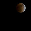 "Lunar Eclipse © 2006 C. M. Neri Huntingdon Valley, PA LUNARE  <div class=""ss-paypal-button""><div class=""ss-paypal-add-to-cart-section""><div class=""ss-paypal-product-options""><h4>Mat Sizes</h4><ul><li><a href=""https://www.paypal.com/cgi-bin/webscr?cmd=_cart&amp;business=T77V5VKCW4K2U&amp;lc=US&amp;item_name=Lunar%20Eclipse%20%C2%A9%202006%20C.%20M.%20Neri%20Huntingdon%20Valley%2C%20PA%20LUNARE&amp;item_number=http%3A%2F%2Fwww.nightflightimages.com%2FGalleries-1%2FNightscapes%2Fi-pjkmKNM&amp;button_subtype=products&amp;no_note=0&amp;cn=Add%20special%20instructions%20to%20the%20seller%3A&amp;no_shipping=2&amp;currency_code=USD&amp;weight_unit=lbs&amp;add=1&amp;bn=PP-ShopCartBF%3Abtn_cart_SM.gif%3ANonHosted&amp;on0=Mat%20Sizes&amp;option_select0=5%20x%207&amp;option_amount0=10.00&amp;option_select1=8%20x%2010&amp;option_amount1=18.00&amp;option_select2=11%20x%2014&amp;option_amount2=28.00&amp;option_select3=card&amp;option_amount3=4.00&amp;option_index=0&amp;charset=utf-8&amp;submit=&amp;os0=5%20x%207"" target=""paypal""><span>5 x 7 $11.00 USD</span><img src=""https://www.paypalobjects.com/en_US/i/btn/btn_cart_SM.gif""></a></li><li><a href=""https://www.paypal.com/cgi-bin/webscr?cmd=_cart&amp;business=T77V5VKCW4K2U&amp;lc=US&amp;item_name=Lunar%20Eclipse%20%C2%A9%202006%20C.%20M.%20Neri%20Huntingdon%20Valley%2C%20PA%20LUNARE&amp;item_number=http%3A%2F%2Fwww.nightflightimages.com%2FGalleries-1%2FNightscapes%2Fi-pjkmKNM&amp;button_subtype=products&amp;no_note=0&amp;cn=Add%20special%20instructions%20to%20the%20seller%3A&amp;no_shipping=2&amp;currency_code=USD&amp;weight_unit=lbs&amp;add=1&amp;bn=PP-ShopCartBF%3Abtn_cart_SM.gif%3ANonHosted&amp;on0=Mat%20Sizes&amp;option_select0=5%20x%207&amp;option_amount0=10.00&amp;option_select1=8%20x%2010&amp;option_amount1=18.00&amp;option_select2=11%20x%2014&amp;option_amount2=28.00&amp;option_select3=card&amp;option_amount3=4.00&amp;option_index=0&amp;charset=utf-8&amp;submit=&amp;os0=8%20x%2010"" target=""paypal""><span>8 x 10 $19.00 USD</span><img src=""https://www.paypalobjects.com/en_US/i/btn/btn_cart_SM.gif""></a></li><li><a href=""https://www.paypal.com/cgi-bin/webscr?cmd=_cart&amp;business=T77V5VKCW4K2U&amp;lc=US&amp;item_name=Lunar%20Eclipse%20%C2%A9%202006%20C.%20M.%20Neri%20Huntingdon%20Valley%2C%20PA%20LUNARE&amp;item_number=http%3A%2F%2Fwww.nightflightimages.com%2FGalleries-1%2FNightscapes%2Fi-pjkmKNM&amp;button_subtype=products&amp;no_note=0&amp;cn=Add%20special%20instructions%20to%20the%20seller%3A&amp;no_shipping=2&amp;currency_code=USD&amp;weight_unit=lbs&amp;add=1&amp;bn=PP-ShopCartBF%3Abtn_cart_SM.gif%3ANonHosted&amp;on0=Mat%20Sizes&amp;option_select0=5%20x%207&amp;option_amount0=10.00&amp;option_select1=8%20x%2010&amp;option_amount1=18.00&amp;option_select2=11%20x%2014&amp;option_amount2=28.00&amp;option_select3=card&amp;option_amount3=4.00&amp;option_index=0&amp;charset=utf-8&amp;submit=&amp;os0=11%20x%2014"" target=""paypal""><span>11 x 14 $29.00 USD</span><img src=""https://www.paypalobjects.com/en_US/i/btn/btn_cart_SM.gif""></a></li><li><a href=""https://www.paypal.com/cgi-bin/webscr?cmd=_cart&amp;business=T77V5VKCW4K2U&amp;lc=US&amp;item_name=Lunar%20Eclipse%20%C2%A9%202006%20C.%20M.%20Neri%20Huntingdon%20Valley%2C%20PA%20LUNARE&amp;item_number=http%3A%2F%2Fwww.nightflightimages.com%2FGalleries-1%2FNightscapes%2Fi-pjkmKNM&amp;button_subtype=products&amp;no_note=0&amp;cn=Add%20special%20instructions%20to%20the%20seller%3A&amp;no_shipping=2&amp;currency_code=USD&amp;weight_unit=lbs&amp;add=1&amp;bn=PP-ShopCartBF%3Abtn_cart_SM.gif%3ANonHosted&amp;on0=Mat%20Sizes&amp;option_select0=5%20x%207&amp;option_amount0=10.00&amp;option_select1=8%20x%2010&amp;option_amount1=18.00&amp;option_select2=11%20x%2014&amp;option_amount2=28.00&amp;option_select3=card&amp;option_amount3=4.00&amp;option_index=0&amp;charset=utf-8&amp;submit=&amp;os0=card"" target=""paypal""><span>card $5.00 USD</span><img src=""https://www.paypalobjects.com/en_US/i/btn/btn_cart_SM.gif""></a></li></ul></div></div> <div class=""ss-paypal-view-cart-section""><a href=""https://www.paypal.com/cgi-bin/webscr?cmd=_cart&amp;business=T77V5VKCW4K2U&amp;display=1&amp;item_name=Lunar%20Eclipse%20%C2%A9%202006%20C.%20M.%20Neri%20Huntingdon%20Valley%2C%20PA%20LUNARE&amp;item_number=http%3A%2F%2Fwww.nightflightimages.com%2FGalleries-1%2FNightscapes%2Fi-pjkmKNM&amp;charset=utf-8&amp;submit="" target=""paypal"" class=""ss-paypal-submit-button""><img src=""https://www.paypalobjects.com/en_US/i/btn/btn_viewcart_LG.gif""></a></div></div><div class=""ss-paypal-button-end""></div>"