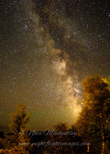 "Milky Way portrait © 2016 Nova Mackentley Ely, MN MWW  <div class=""ss-paypal-button""><div class=""ss-paypal-add-to-cart-section""><div class=""ss-paypal-product-options""><h4>Mat Sizes</h4><ul><li><a href=""https://www.paypal.com/cgi-bin/webscr?cmd=_cart&business=T77V5VKCW4K2U&lc=US&item_name=Milky%20Way%20portrait%20%C2%A9%202016%20Nova%20Mackentley%20Ely%2C%20MN%20MWW&item_number=http%3A%2F%2Fwww.nightflightimages.com%2FGalleries-1%2FNew%2Fi-TPfHh8Z&button_subtype=products&no_note=0&cn=Add%20special%20instructions%20to%20the%20seller%3A&no_shipping=2&currency_code=USD&weight_unit=lbs&add=1&bn=PP-ShopCartBF%3Abtn_cart_SM.gif%3ANonHosted&on0=Mat%20Sizes&option_select0=5%20x%207&option_amount0=12.00&option_select1=8%20x%2010&option_amount1=19.00&option_select2=11%20x%2014&option_amount2=29.00&option_select3=card&option_amount3=5.00&option_index=0&charset=utf-8&submit=&os0=5%20x%207"" target=""paypal""><span>5 x 7 $12.00 USD</span><img src=""https://www.paypalobjects.com/en_US/i/btn/btn_cart_SM.gif""></a></li><li><a href=""https://www.paypal.com/cgi-bin/webscr?cmd=_cart&business=T77V5VKCW4K2U&lc=US&item_name=Milky%20Way%20portrait%20%C2%A9%202016%20Nova%20Mackentley%20Ely%2C%20MN%20MWW&item_number=http%3A%2F%2Fwww.nightflightimages.com%2FGalleries-1%2FNew%2Fi-TPfHh8Z&button_subtype=products&no_note=0&cn=Add%20special%20instructions%20to%20the%20seller%3A&no_shipping=2&currency_code=USD&weight_unit=lbs&add=1&bn=PP-ShopCartBF%3Abtn_cart_SM.gif%3ANonHosted&on0=Mat%20Sizes&option_select0=5%20x%207&option_amount0=12.00&option_select1=8%20x%2010&option_amount1=19.00&option_select2=11%20x%2014&option_amount2=29.00&option_select3=card&option_amount3=5.00&option_index=0&charset=utf-8&submit=&os0=8%20x%2010"" target=""paypal""><span>8 x 10 $19.00 USD</span><img src=""https://www.paypalobjects.com/en_US/i/btn/btn_cart_SM.gif""></a></li><li><a href=""https://www.paypal.com/cgi-bin/webscr?cmd=_cart&business=T77V5VKCW4K2U&lc=US&item_name=Milky%20Way%20portrait%20%C2%A9%202016%20Nova%20Mackentley%20Ely%2C%20MN%20MWW&item_number=http%3A%2F%2Fwww.nightflightimages.com%2FGalleries-1%2FNew%2Fi-TPfHh8Z&button_subtype=products&no_note=0&cn=Add%20special%20instructions%20to%20the%20seller%3A&no_shipping=2&currency_code=USD&weight_unit=lbs&add=1&bn=PP-ShopCartBF%3Abtn_cart_SM.gif%3ANonHosted&on0=Mat%20Sizes&option_select0=5%20x%207&option_amount0=12.00&option_select1=8%20x%2010&option_amount1=19.00&option_select2=11%20x%2014&option_amount2=29.00&option_select3=card&option_amount3=5.00&option_index=0&charset=utf-8&submit=&os0=11%20x%2014"" target=""paypal""><span>11 x 14 $29.00 USD</span><img src=""https://www.paypalobjects.com/en_US/i/btn/btn_cart_SM.gif""></a></li><li><a href=""https://www.paypal.com/cgi-bin/webscr?cmd=_cart&business=T77V5VKCW4K2U&lc=US&item_name=Milky%20Way%20portrait%20%C2%A9%202016%20Nova%20Mackentley%20Ely%2C%20MN%20MWW&item_number=http%3A%2F%2Fwww.nightflightimages.com%2FGalleries-1%2FNew%2Fi-TPfHh8Z&button_subtype=products&no_note=0&cn=Add%20special%20instructions%20to%20the%20seller%3A&no_shipping=2&currency_code=USD&weight_unit=lbs&add=1&bn=PP-ShopCartBF%3Abtn_cart_SM.gif%3ANonHosted&on0=Mat%20Sizes&option_select0=5%20x%207&option_amount0=12.00&option_select1=8%20x%2010&option_amount1=19.00&option_select2=11%20x%2014&option_amount2=29.00&option_select3=card&option_amount3=5.00&option_index=0&charset=utf-8&submit=&os0=card"" target=""paypal""><span>card $5.00 USD</span><img src=""https://www.paypalobjects.com/en_US/i/btn/btn_cart_SM.gif""></a></li></ul></div></div> <div class=""ss-paypal-view-cart-section""><a href=""https://www.paypal.com/cgi-bin/webscr?cmd=_cart&business=T77V5VKCW4K2U&display=1&item_name=Milky%20Way%20portrait%20%C2%A9%202016%20Nova%20Mackentley%20Ely%2C%20MN%20MWW&item_number=http%3A%2F%2Fwww.nightflightimages.com%2FGalleries-1%2FNew%2Fi-TPfHh8Z&charset=utf-8&submit="" target=""paypal"" class=""ss-paypal-submit-button""><img src=""https://www.paypalobjects.com/en_US/i/btn/btn_viewcart_LG.gif""></a></div></div><div class=""ss-paypal-button-end""></div>"