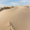2015 Jockey's Ridge State Park, Nag's Head, North Carolna