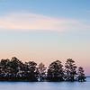 2014 Lake Mattamuskeet, North Carolina